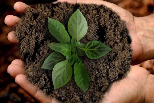 Sostenibilità, Bper Banca partner di All4Climate-Italy2021