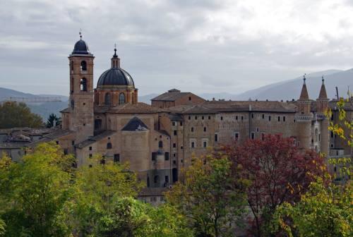Urbino, aumentano gli incassi di Palazzo ducale: 263mila euro in estate (+17% rispetto al dato pre-pandemia)