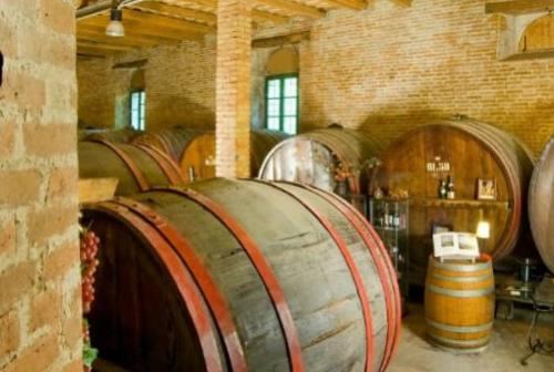"""FAI Jesi e Vallesina attraverso """"Le terre del vino"""""""