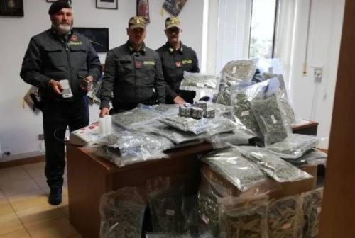 Montecosaro: oltre 170 chili di droga in un casolare, operaio patteggia 2 anni
