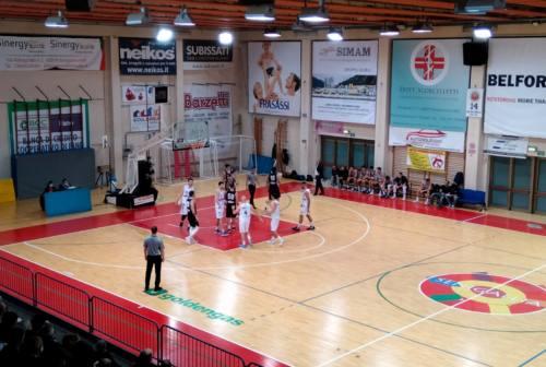 Basket, la Goldengas cerca continuità: a Senigallia arriva Giulianova