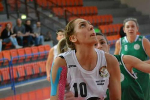 Basket Serie C, il Cus Ancona pronto a partire