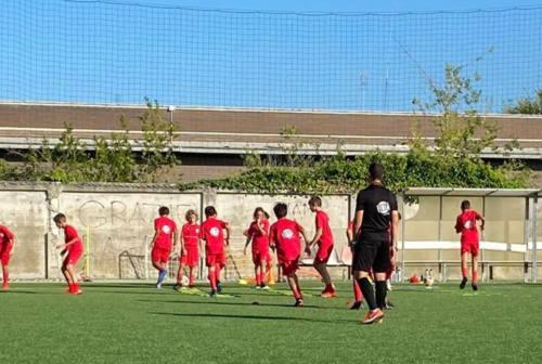 Il responsabile del settore giovanile dell'Ancona Matelica, Scodanibbio: «Tanto da costruire ma c'è entusiasmo»