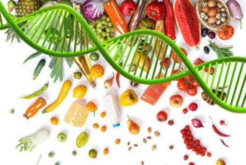 La salute nel piatto? Te lo dice la piattaforma con la dieta su base genetica ideata da quattro aziende marchigiane