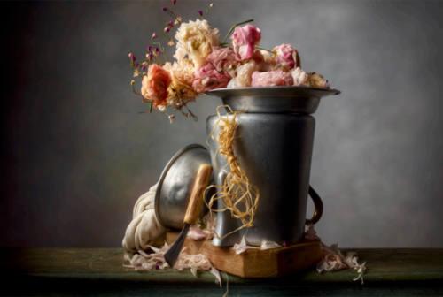 Fotografia still life, gli scatti di Christopher Broadbent in mostra a Senigallia